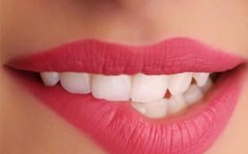 denti-anatomia3